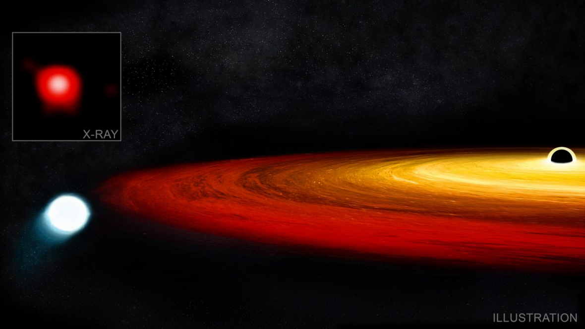 داستان زندگی ستاره ای در کنار یک سیاه چاله ، رمز زنده ماندن فاش شد