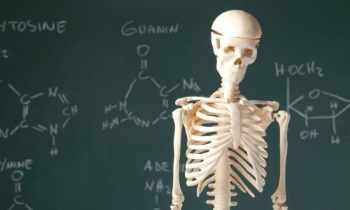شیمی در آزمایشگاه است یا بدن انسان؟ ، دلیل علمی گریه هنگام خورد کردن پیاز تعیین شد