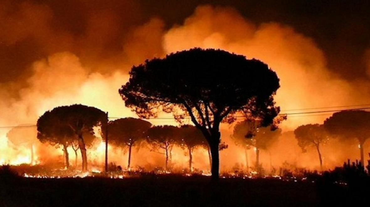 وقوع آتش سوزی در مراتع و جنگل های اندیکا